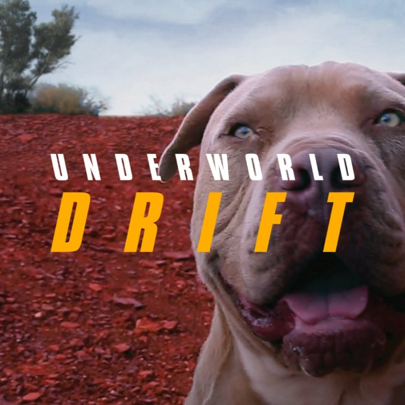 DRIFT Playlist - Dog v2